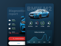 BMW Dashboard and diagnostics