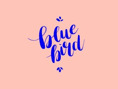 Blue Bird Brush Lettering brushes brushpen brush script calligraphy lettering procreateapp procreate