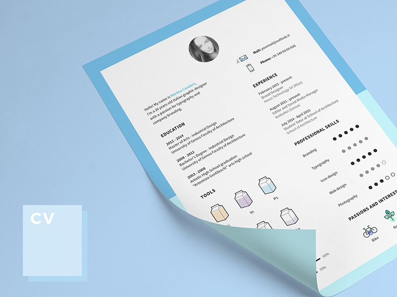 Cv and Icons for Free design graphic icons template indesign cv free