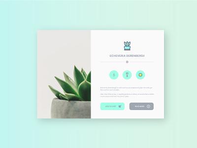 Plant app illustrator design uidesign graphic green concept plant app ui interface