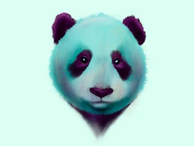 Panda ipad pro teddy bear bear fantasy beautiful animal nature procreate watercolor painting paint panda