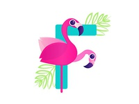 F is for Flamingo 💕