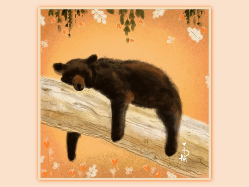misha book illustration drawing picture frame orange tired wild animals nature forest autumn dream rest color brown beige leaves tree bear