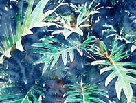 Rain and Leaves