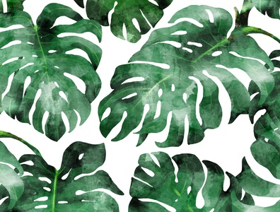 The Wild Spirit II eclectic exotic wildlife wild jungle forest leaves botanical nature palm monstera eclectix green tropical watercolor pattern
