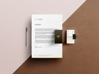 Branding I Designed for Winfin ~ Accounting Firm, Dubai