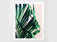 Palm V2 Licensed Art Work