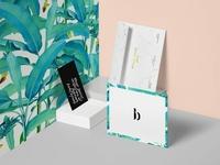 Branding & Print Design for Black Book Of Fashion