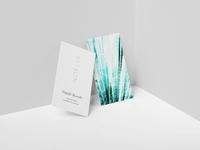 Branding & Print Design for Noelle