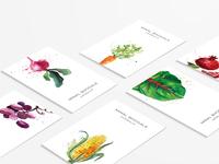 Branding & Print Design for Minal Bhogle