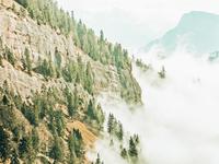 Hills And Fog