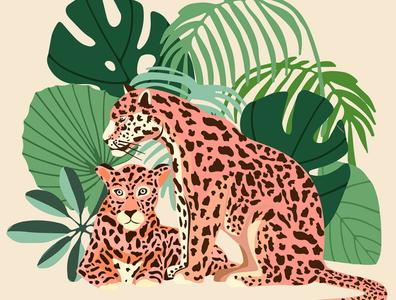 Blush Jaguars