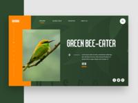 Wildlife UI Concept