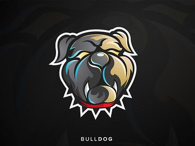 Bulldog Head Logo Illustration logo esportlogo design esport wild pet head inspiration illustration animal