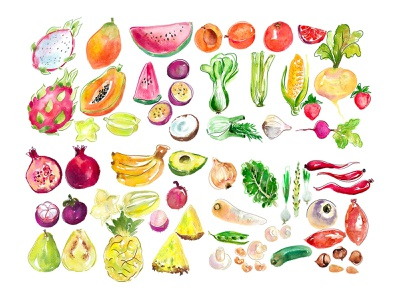 Fruit and vegetables watercolour illustration foodpackaging packagingdesign logofruit summerfruit watercolour illustration