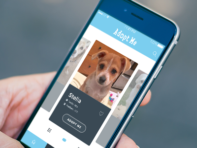 Pet adoption app ios mobile pet finder app