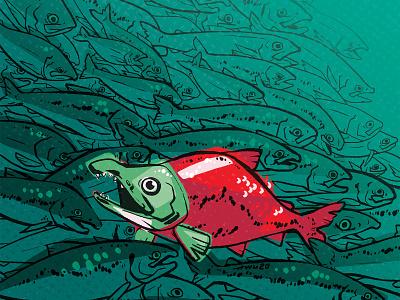 Sockeye Salmon texture fish animal nature illustration