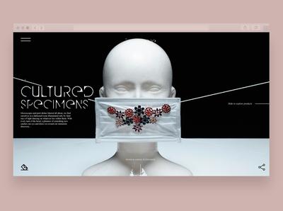 Preciosa - St. Elsewhere Web UI & UX