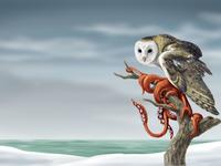 Squidowl painting