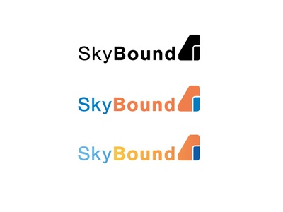 Airliner Skybound