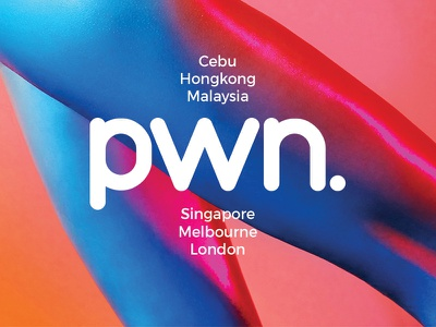 Pwn logo design typography stroke logo branding brand identity