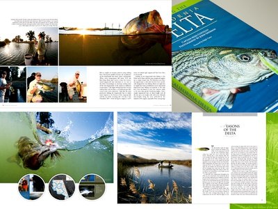CA Delta Coffee Table Book book coffee table book fishing fly fishing editorial
