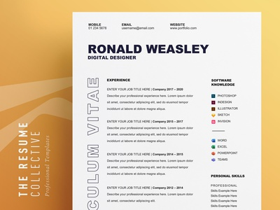 CV Template | Easily Editable | Word Format | Download professional cv elegant cv download editable resume resume clean professional resume minimalist resume modern resume modern cv curriculum vitae cv