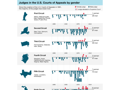 """Judges in the U.S. Courts of Appeals by gender"" (2008) news infographics"