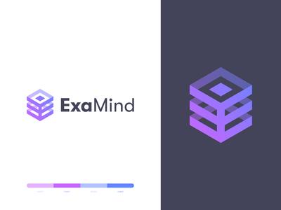 Examind Logo Design cube hexagon e letter data tech technology logo design brand identity symbol icon minimal brand logodesign branding design logo
