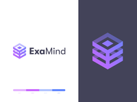 Examind Logo Design