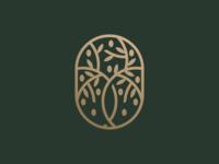 Olive Tree Concept