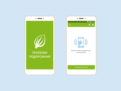 Concept Prilozhi Podorozhnik App