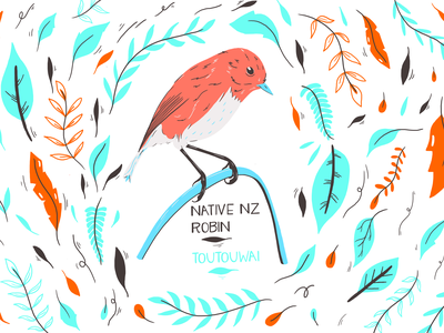 Toutouwai observational nature illustration quick sketch procreate art maori plant bird native new zealand