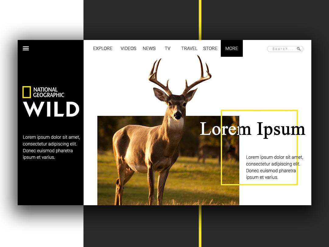 Nat Geo Wild - UI Design by Rafly Pratama on Dribbble