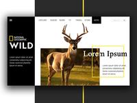 Nat Geo Wild - UI Design