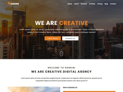 Nandini - One Page Business HTML Template startup social multipurpose marketing landing creative corporate business blog agency