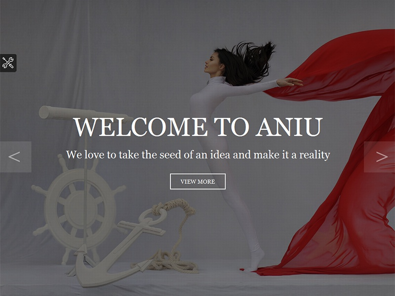 ANIU - Responsive Onepage Site Template one page responsive template aniu modern app showcase ajax php form video