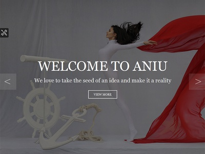 ANIU - Responsive Onepage Site Template