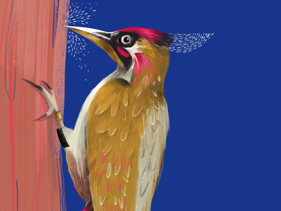 Peckaboo - busy at work whimsy creature charactercreation character insect woodpecker animal bird whimsical night design forest mural landscape branding illustrator digital conceptart animation illustration