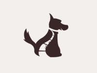 Dog walking company