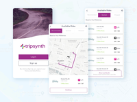 TripSynth ( UBER & LYFT ) Joint Venture Concept