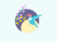 Day-13 Hummingbird