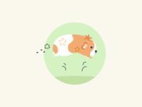 Day 36 Guinea Pig