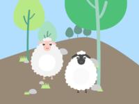 Day 42 Sheep