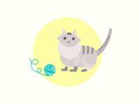 Day - 43 Cat