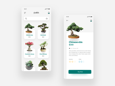 Pattels uiuxdesign eco ios nature green plants bonsai app concept ui ux minimal cards app