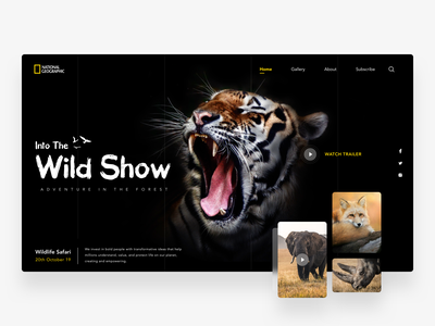 Wildlife Website adventure tiger uiux forest movie animals discovery national geographic landing page typography ios icon design minimal app concept ux cards wildlife ui website