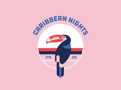 Caribbean Nights geometric design geometric illustration costa rica toucan caribbean illustration vector color geometric color palette
