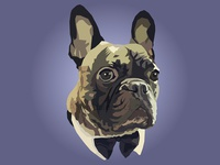 Loki the French Bulldog - Geometric