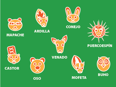 Animalhive - El Bosque colorful children kids cute flatcolor animal illustration